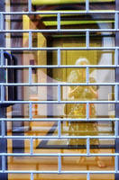 the cage by Batsceba