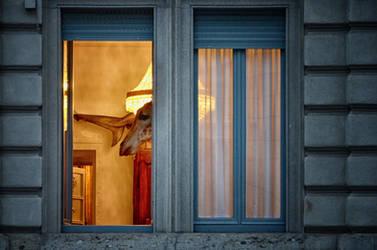 Dsc0121 Milano segreta