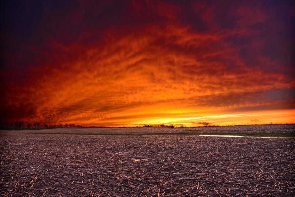 Crimson Sky by SNoWxWoLF33