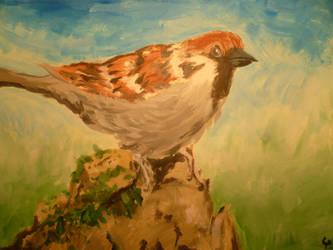 Finch by MattRose1