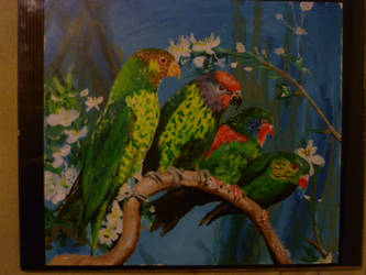 Parrots on a branch by MattRose1