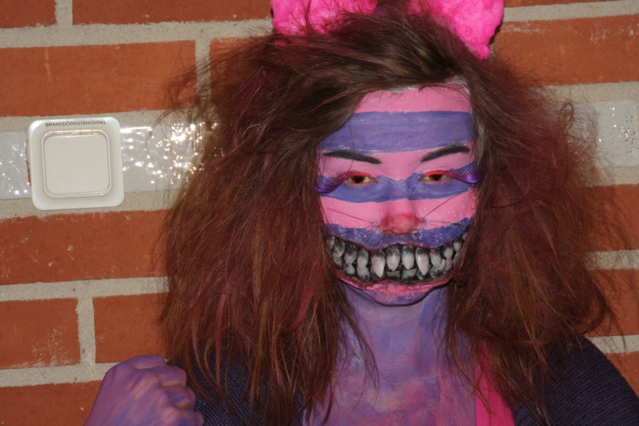 Cheshire Cat Mashup Makeup By Elsajo On Deviantart