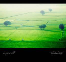 Ta Pa Field _2