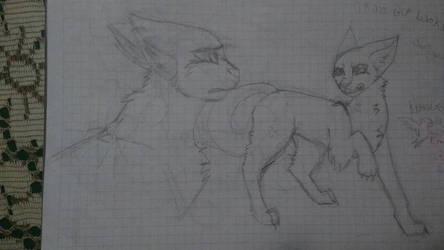 Gatos peleando by NirraClawthecats
