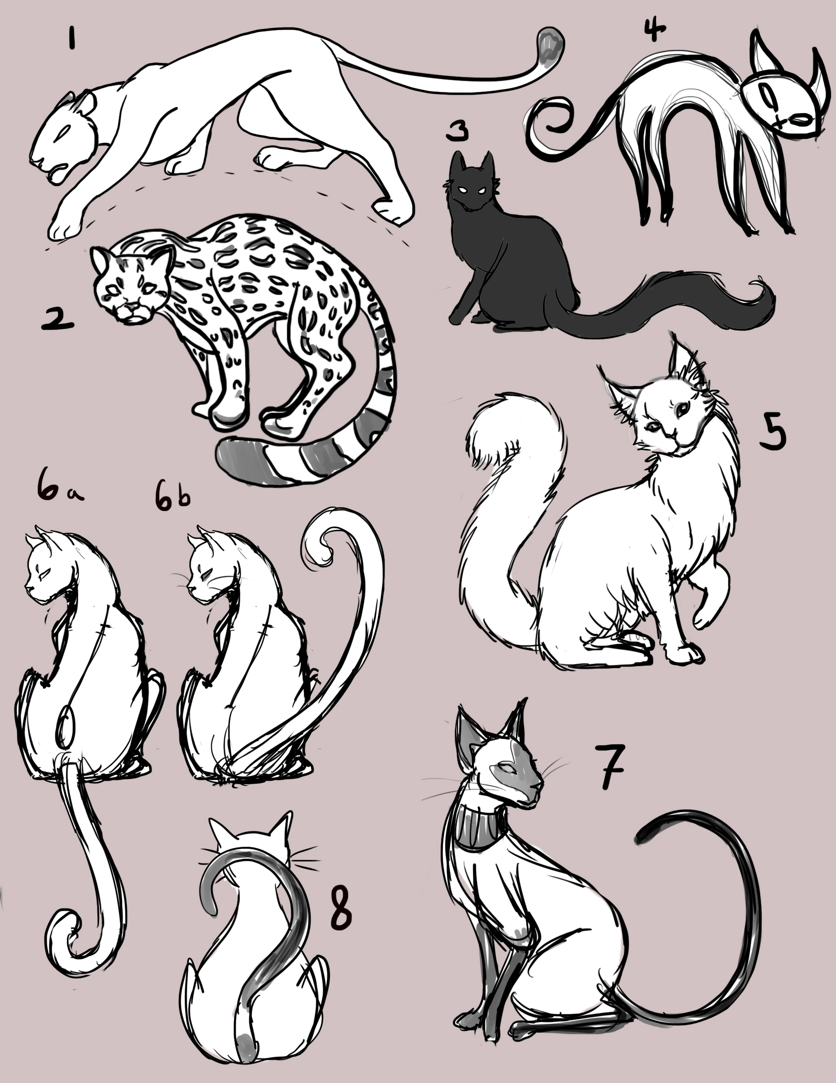 Line Drawing Cat Tattoo : Cat tattoo sketches by rivkaz on deviantart