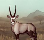 Prompted - Gemsbok
