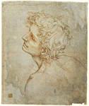 Fioravanti Folio: Master Copy