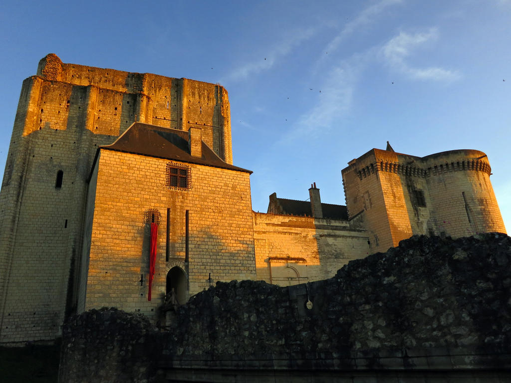 Castle of Loches, France by elainelouve