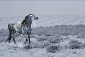 Ice Horse by Lavander-Thistle