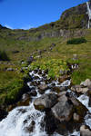 Iceland Stock 50 by Lavander-Thistle