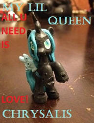 My Lill Queen Chrysalis by coonk9