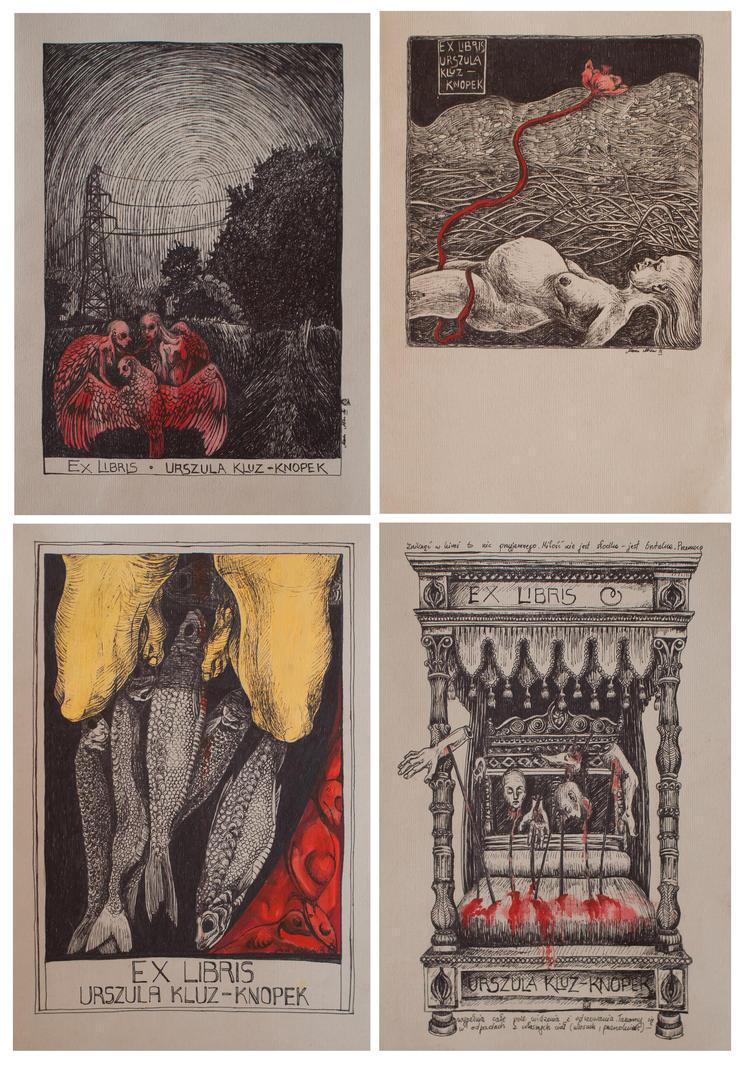 Exlibris No 7 by marzenaabl