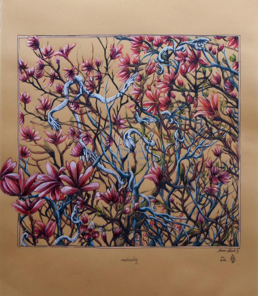 Magnolias by marzenaabl
