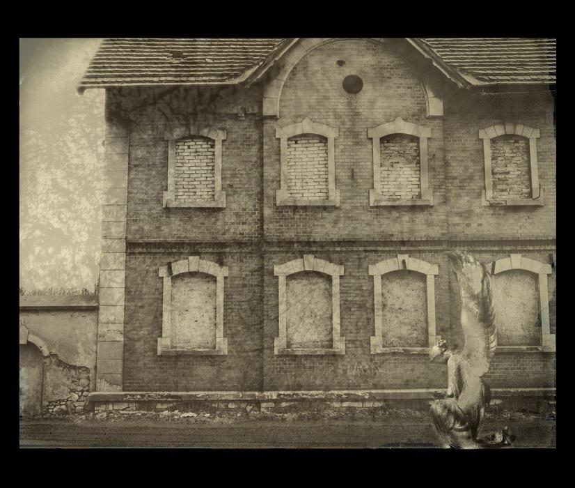 Usher  house by marzenaabl