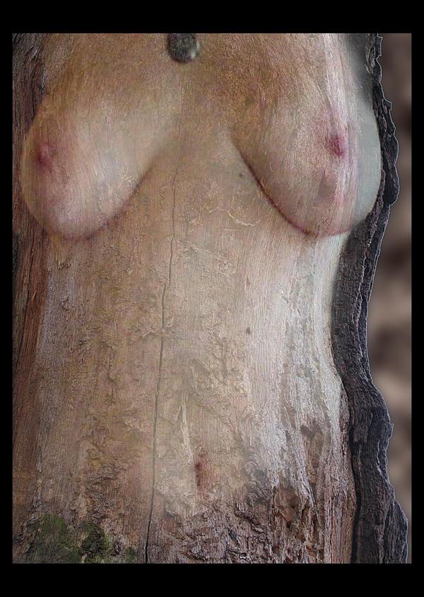 Druidess by marzenaabl
