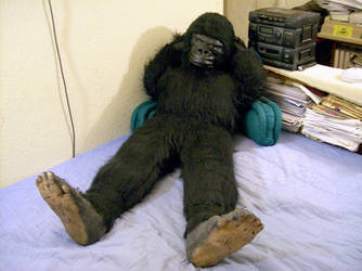 Gorilla Plush Pics-4 by Pawfan
