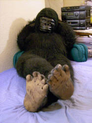 Gorilla Plush Pics-5 by Pawfan