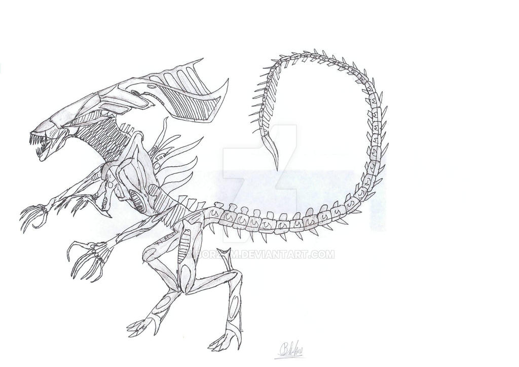 06 xenomorph queen v 1 by borzym on deviantart for Xenomorph coloring pages