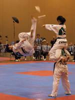 Taekwondo U.S. Open 7 by Kicks02