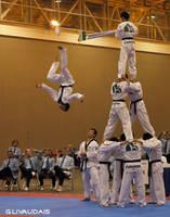 Taekwondo U.S. Open 8 by Kicks02