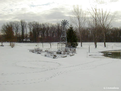 Thanksgiving 2004 - Windmill