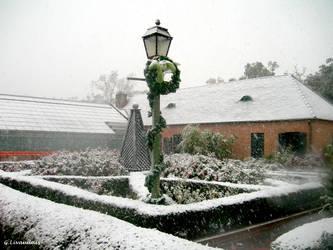 NOLA Snow - City Park Gardens by Kicks02