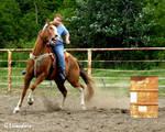 Rodeo - Barrels 5