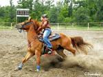 Rodeo - Barrels 7