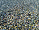 Point No Point - Pebble Beach