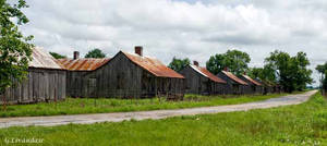 Laurel Valley Plantation 7