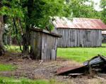 Laurel Valley Plantation 10