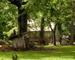 Laurel Valley Plantation 12