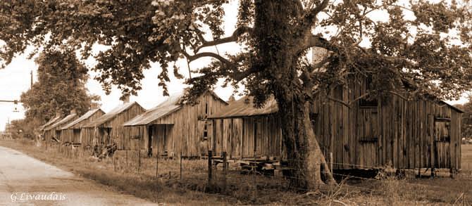 Laurel Valley Plantation 13 by Kicks02