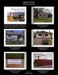 Signs of Life Surviving Katrina