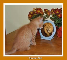 Dream Big by Kicks02