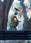 Bird on Butler Fountain