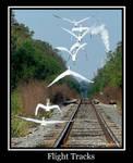 Flight Tracks