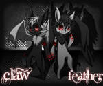 Claw and Feather