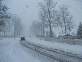 HEAVY SNOW - December 2010 by carlos62