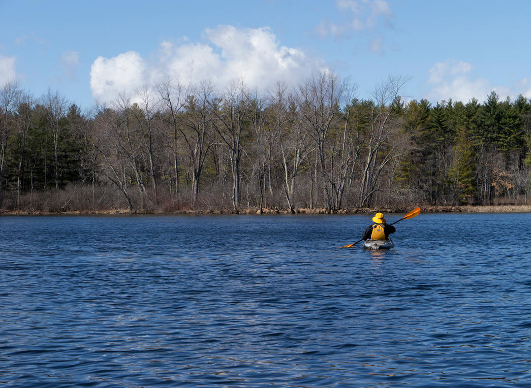 Oxbow Stand on the Nashua River by astutefish