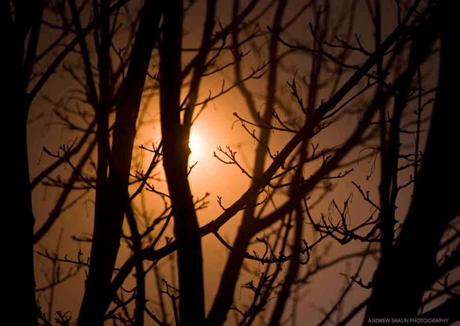 http://fc07.deviantart.net/fs41/f/2009/033/a/8/Calm_Night_by_numericnox.jpg