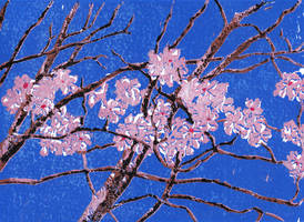 Cherry Blossoms by BRipin