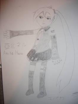 DEN Akita Neru Drawing