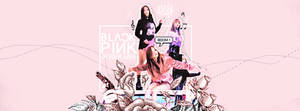 [140816 / COVER FB ] : BLACKPINK IN YOUR AREA