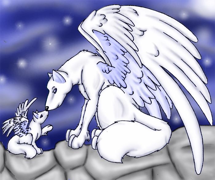 Angel Wolf by tyrande-wolfgirl on DeviantArt