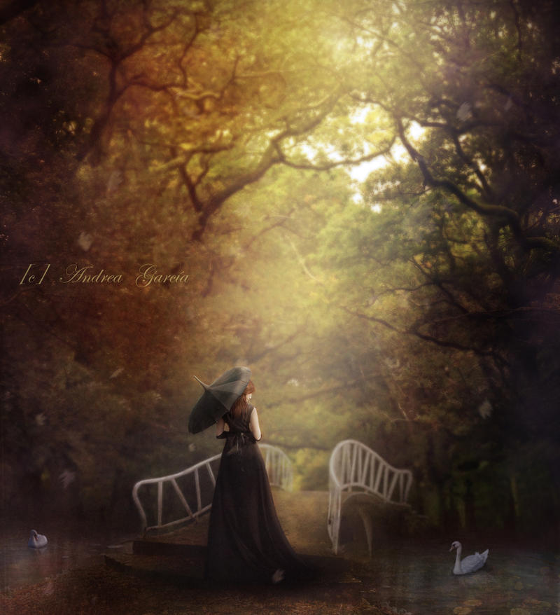 Autumn Dream by AndyGarcia666