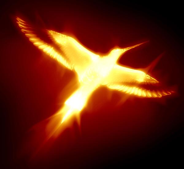 Burning phoenix by arghus