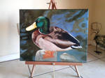 Mallard Duck Painting by I-rE-nA-216
