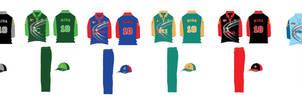 final uniform colors for women cricket cup