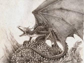 Dragon by Skirill